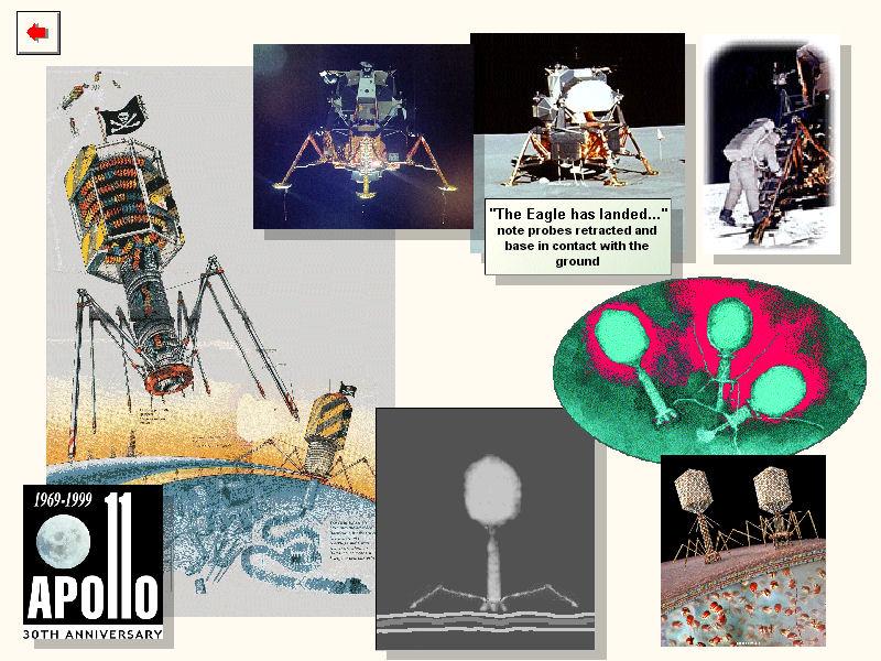 spacecraft virus - photo #3