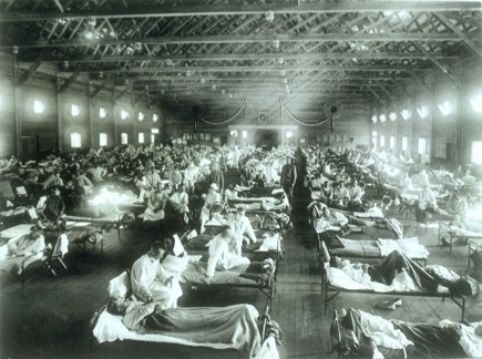 A Brief History of Influenza (2/5)