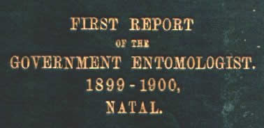 "The cover of the ""Fuller Report"""