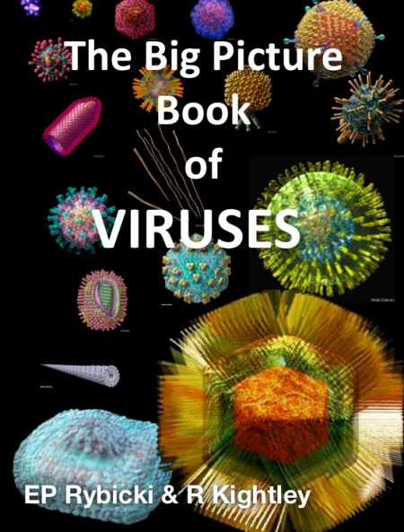 Virus_Picture_Book_copy_iba